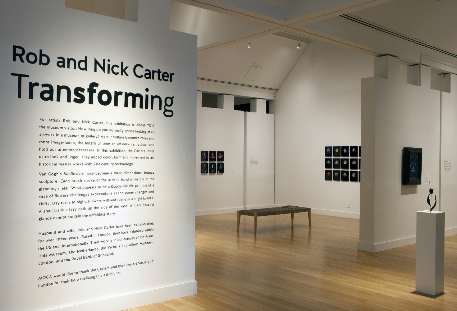 Rob and Nick Carter - Transforming, MOCA Virginia · © Copyright 2018