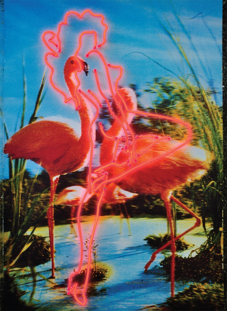 Rob and Nick Carter - RN789, Pink Flamingos, 2011 · © Copyright 2018