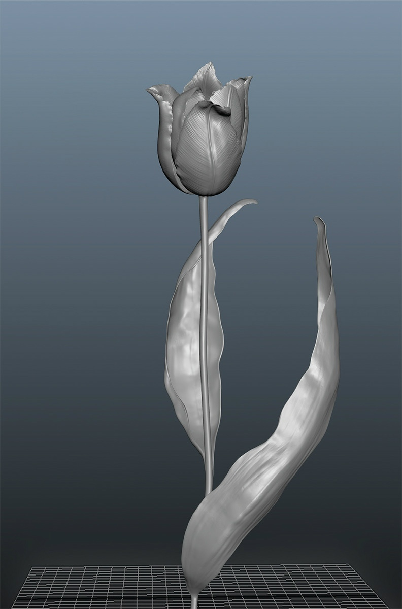 Rob and Nick Carter - RN914, Black Tulip, 2012 · © Copyright 2018